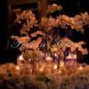 130x130 sq 1390270316955 fernndecor best indian wedding decor planner hicks
