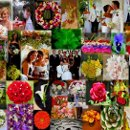 130x130 sq 1328753585453 weddingsunvalleyfloristcollage