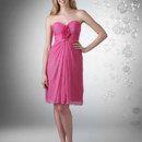 Sweetheart strapless bust, shirred bodice, with rosettes on center front. Short dress.