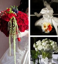 Charlotte Wedding Flowers photo