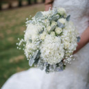 130x130 sq 1458844836380 dusty miller and white 2