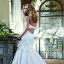 Bella Corded embroidered lace fit-to-flare bridal gown with flower and lace applique details on Silk Organza skirt and cut out back.