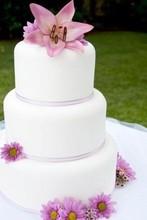 220x220 1364831436607 wedding cake
