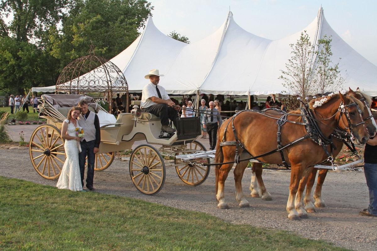 Skyrock Farm And Carousel Venue Hamel Mn Weddingwire
