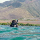 130x130 sq 1364835207339 snorkeling with sea turtles in maui