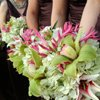 130x130 sq 1323638525193 bouquets300