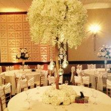 220x220 sq 1475683925753 tall tree centerpiece wedding ceremony  wedding re