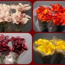 130x130 sq 1369778890247 mini calla bunches