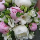 130x130 sq 1372010603323 peony and white bride