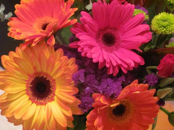 photo 22 of Sunglow Bulk Flowers