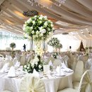 130x130_sq_1331140365378-bigstockweddingtablesetting4308334