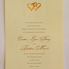 220x220 sq 1330021289652 weddingiinvitation4