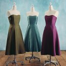 130x130 sq 1335168349241 bridesmaidsdresses2300