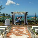 130x130 sq 1326318698519 aulanimickeyminniewedding