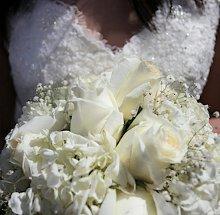 220x220 1354488769484 weddingphotography