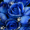 130x130 sq 1373478052209 silver blue1