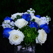 220x220 sq 1373478046076 silver blue white rose centerpiece