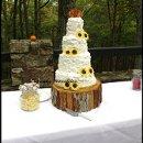 130x130 sq 1349129088802 cupcakenoveltiesrusticcountrystylesunflowerweddingcake2