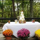 130x130 sq 1349129091066 cupcakenoveltiesrusticcountrystylesunflowerweddingcake1