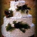 130x130 sq 1365172125194 cupcake novelties wedding cake rustic pinecones
