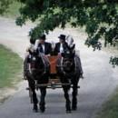 130x130 sq 1389108527917 horse and carraig