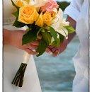 130x130 sq 1363238578823 linguest.wedding.lr18