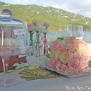 130x130 sq 1363238866743 stthomasbeachwedding2