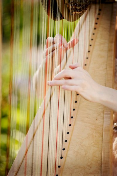 photo 10 of Diana Elliott, harpist