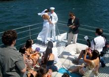 220x220 1365984714444 wedding10