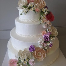 220x220 sq 1405476786913 weddingcake3