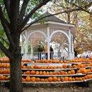 130x130 sq 1348016259197 pumpkinfestival