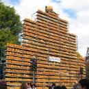 130x130 sq 1348016260177 pumpkins1