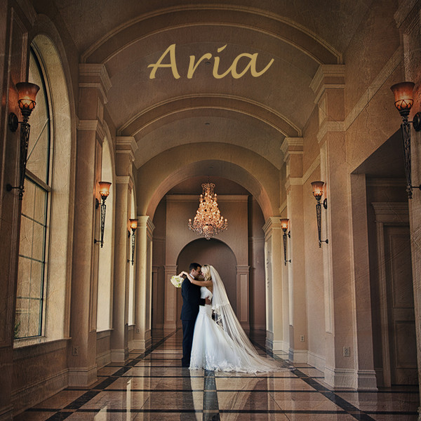 Aria Weddings And Banquet Facility