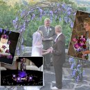 Picture contains an arch decorated with purple westeria, a purple spring mix bouquet, purple orchids in lighted aqua beads and a brides cake decorated with purple roses.