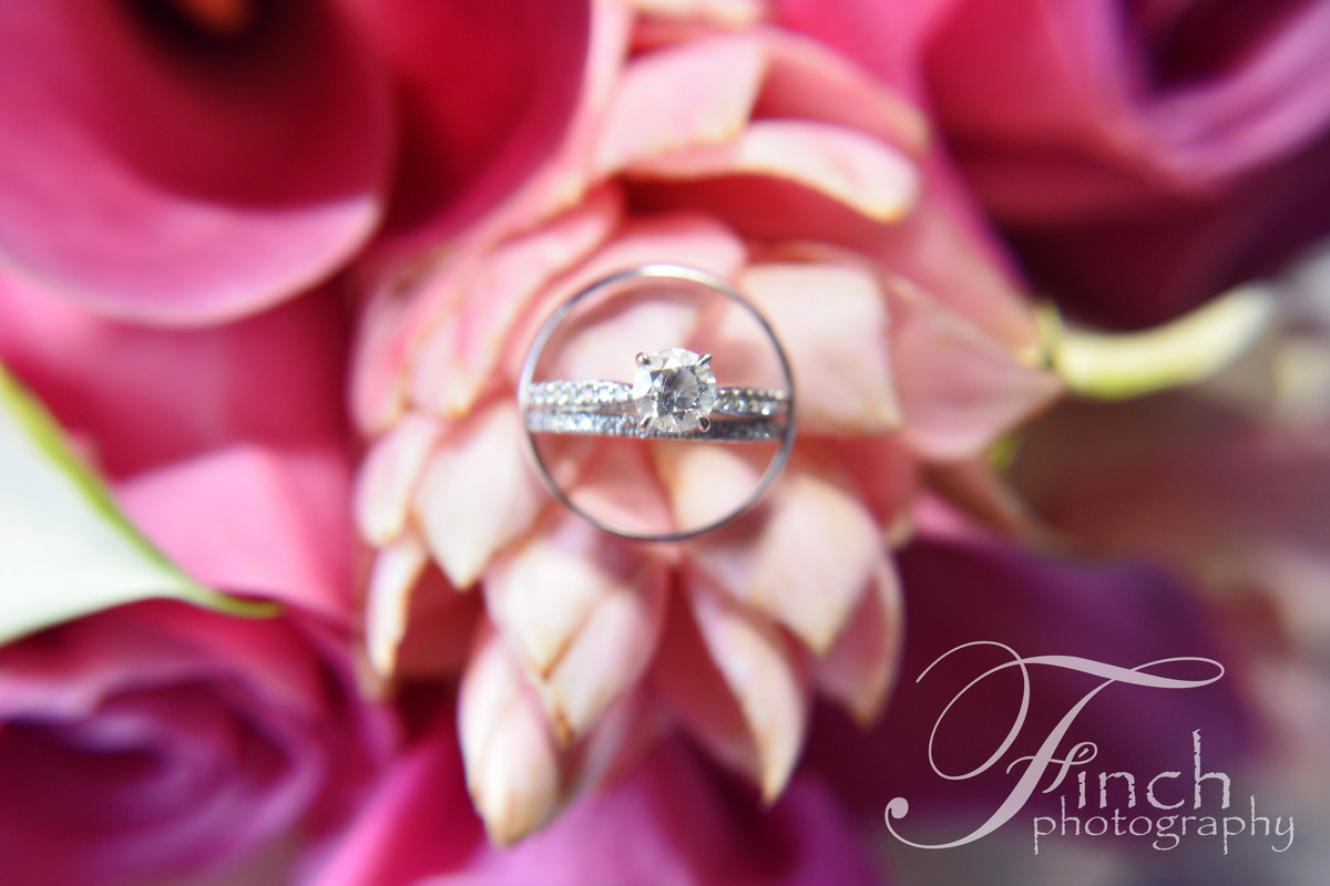 Finch Photography - Photography - Syracuse, NY - WeddingWire