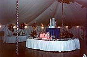 photo 19 of Orange County Party Rentals