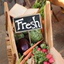 130x130 sq 1352525758553 farmersmarketstyledshootlightboxphotographyfarmersmarket109low