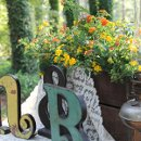 130x130 sq 1328923710210 flowersincrates