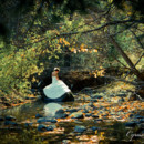 130x130 sq 1415660563292 anna trash the dress session 4