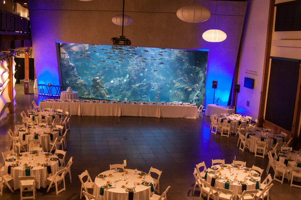 Seattle Aquarium Seattle Wa Wedding Venue