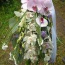 130x130 sq 1222055552167 orchidbouquet