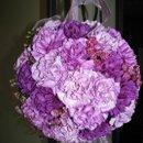 130x130_sq_1277143262860-purplepomander