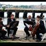String Poets Quartet image