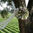 130x130 sq 1208121931175 florali wwlogo