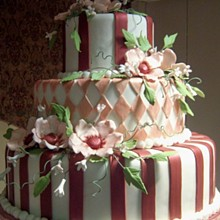 220x220 sq 1326160635833 bridalshowcakemichelle