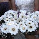 130x130_sq_1295983648081-courtyardflowers3