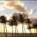 130x130_sq_1332014678966-hawaii01