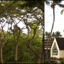 130x130_sq_1332014812515-hawaii09