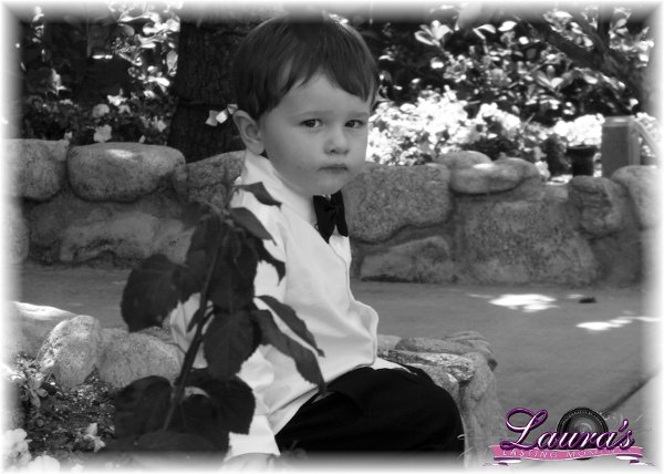 photo 2 of Laura's Lasting Moments Photography