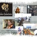 130x130 sq 1273904297258 violinesgalanterien